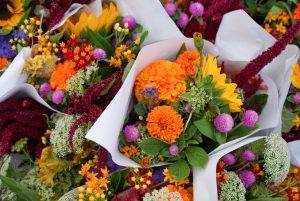 vibrant blooms in white paper wrapping
